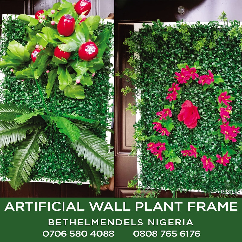 Artificial wall Plant Frame