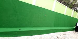 Artificial Grass Installation On the Wall At Adron Home and Property Limited