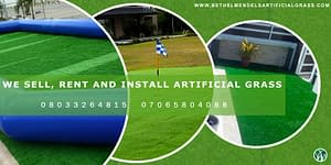Read more about the article Nigeria's Number One Landscape Company