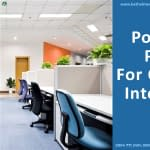 Popular Plants For Office Interiors