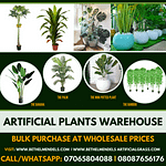 Benefit Of Artificial Plants and Flowers In Your Living Space