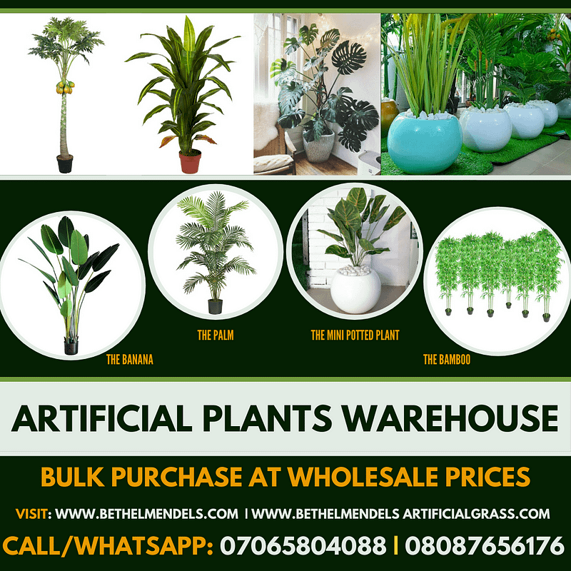 Read more about the article Benefit Of Artificial Plants and Flowers In Your Living Space