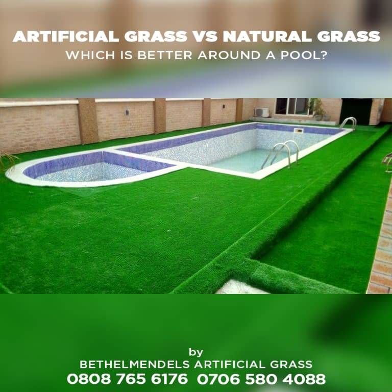 What kind of grass is best around pools?