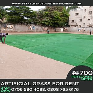 Artificial Grass Installation at Ikoyi Lagos (Rent/hire)