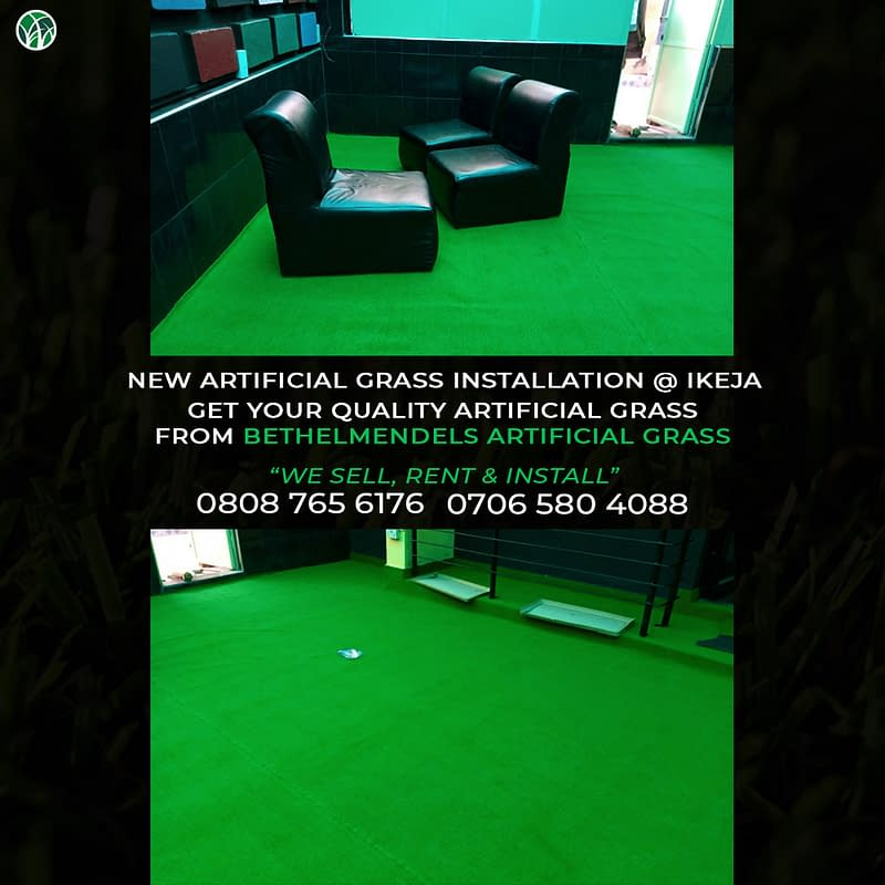 Reasons To Install an Artificial Grass Turf