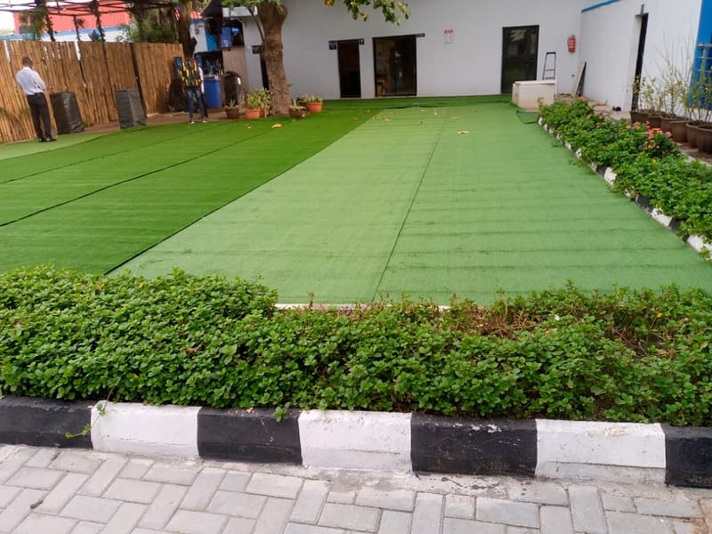 Homeowners Use Artificial Grass & Here Is Why
