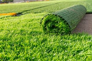 Where To Use Artificial Grass.