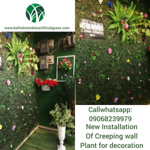 Wall Decoration with Artificial Creeping plants