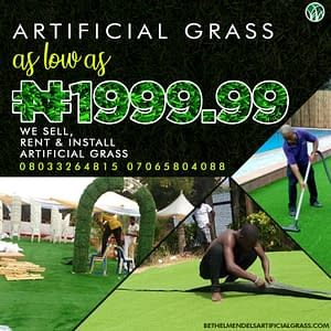 Artificial Green As Low As 1,999 Naira