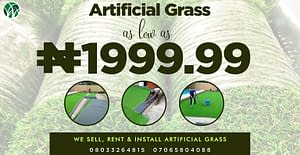 Artificial Grass At Cheaper Rate. Hurry!!