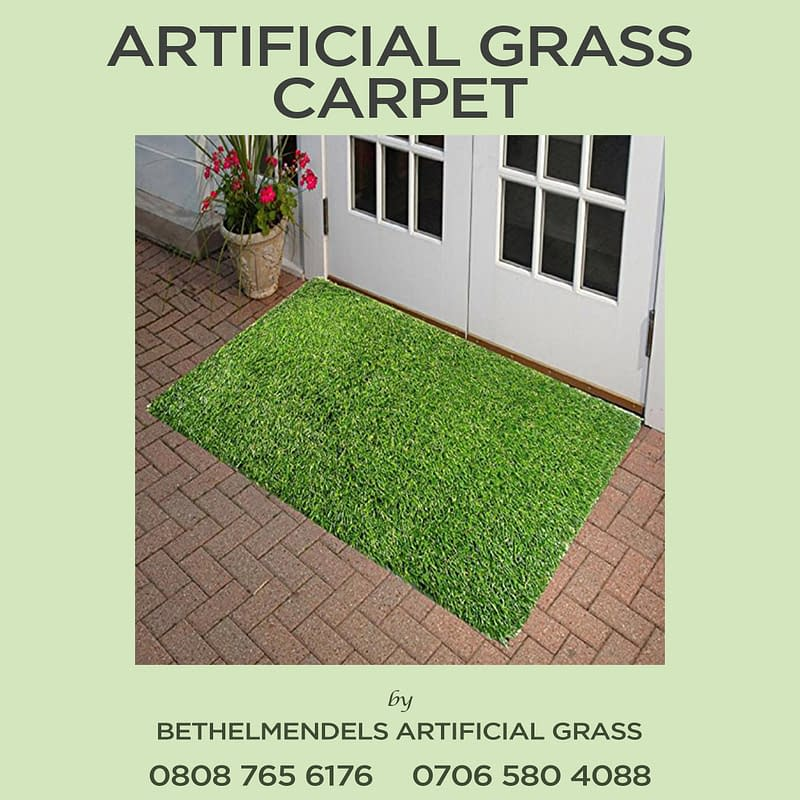 Reasons to Use Artificial Grass Carpet to Improve Your Living Space