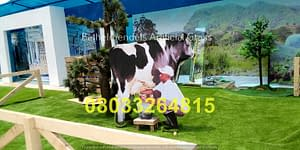 Project with FrieslandCampina Nigeria ( Owner of Peak Milk) 670sqm of Natural Artificial Grass