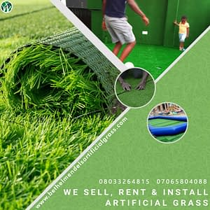 Read more about the article Synthetic/turf Import and Suppliers