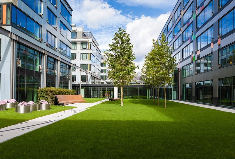 Artificial Grass Against Rodents and Unwanted Organisms