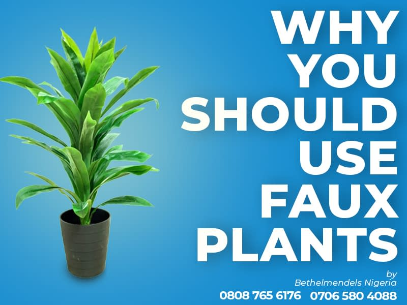 4 Reasons To Buy An Artificial Plant/Flower